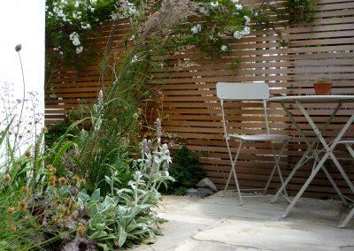 Courtyard Garden in Camberwell, London