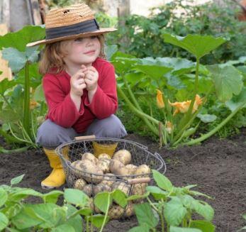 kids and veg