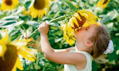 5 TIPS FOR PLANNING A CHILD-FRIENDLY GARDEN