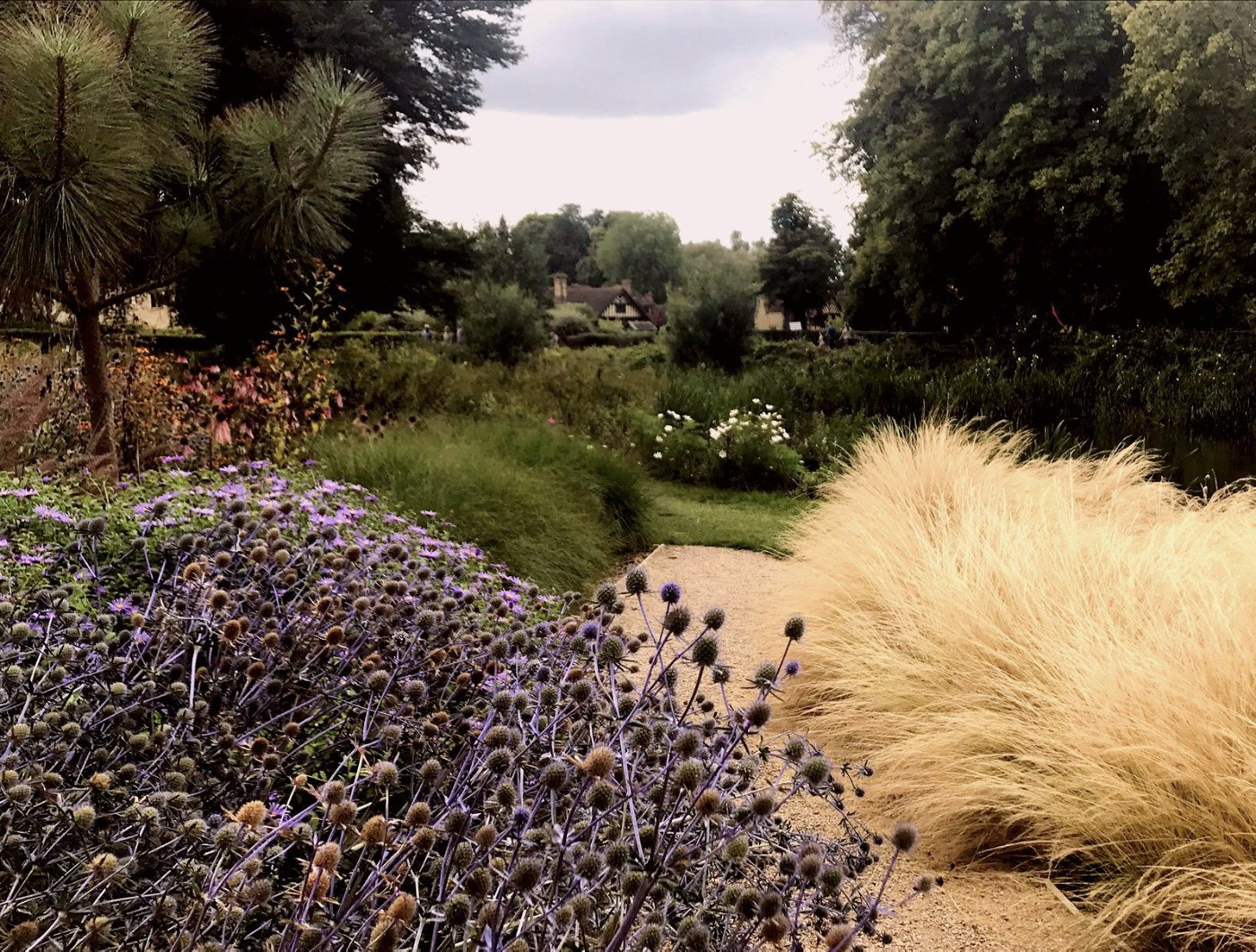 Echniops, Faith Garden