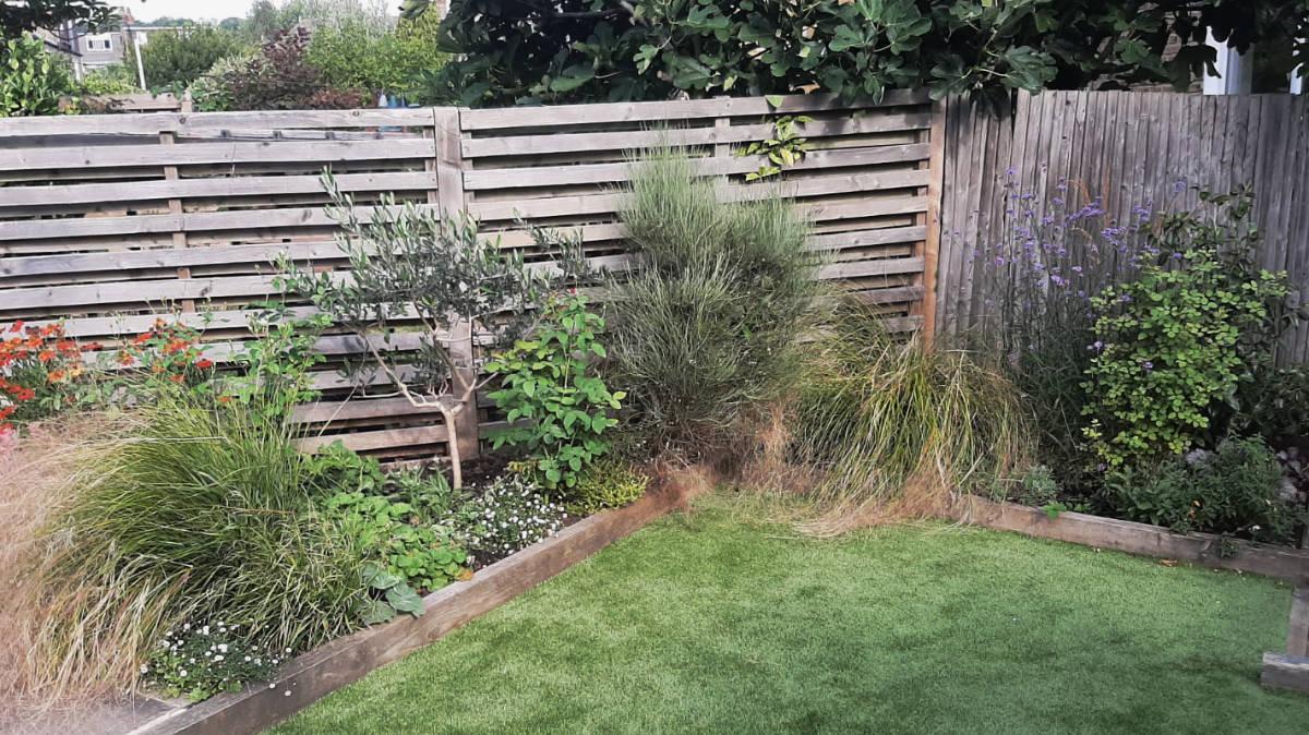 Left side, back garden