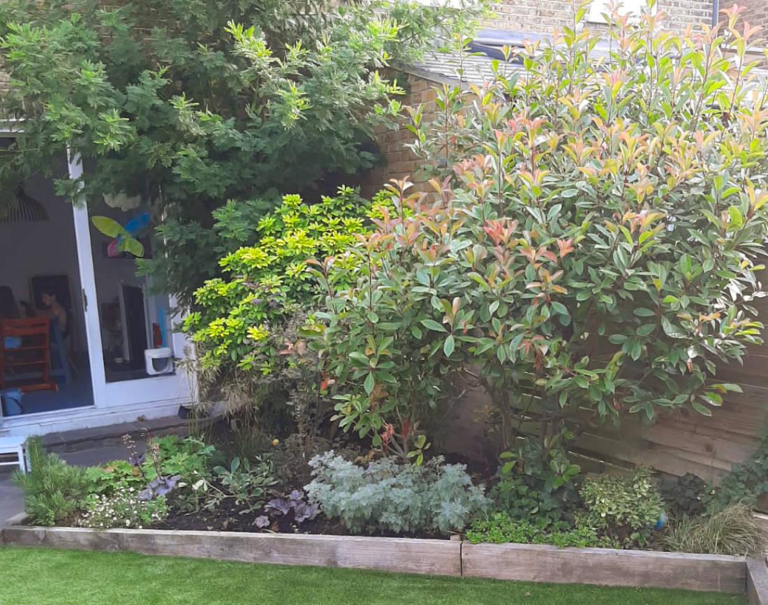 Right side, back garden