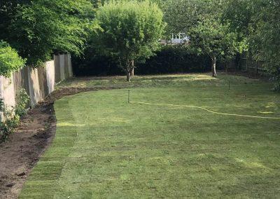 Garden lawn after